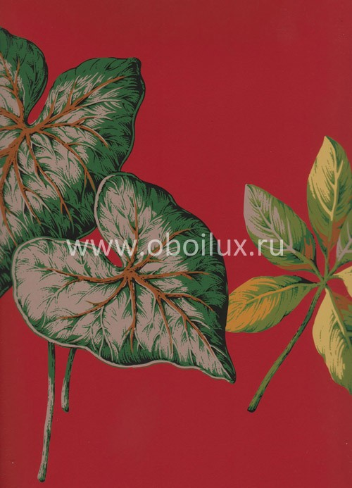Американские обои York,  коллекция Antonina Vella - Botanica, артикулVB6702