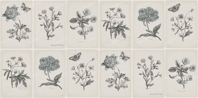Шведские обои Borastapeter,  коллекция Garden Party, артикул3452