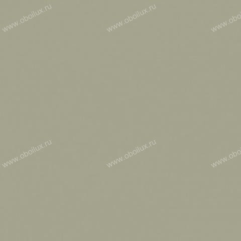 Французские обои Caselio,  коллекция Eternity, артикулENY56357289