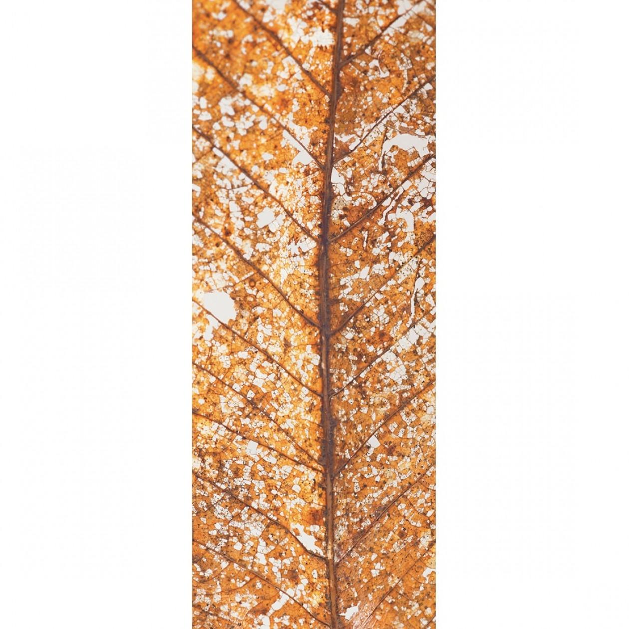 Французские обои Caselio,  коллекция Trendy Panels, артикулTDP58771040