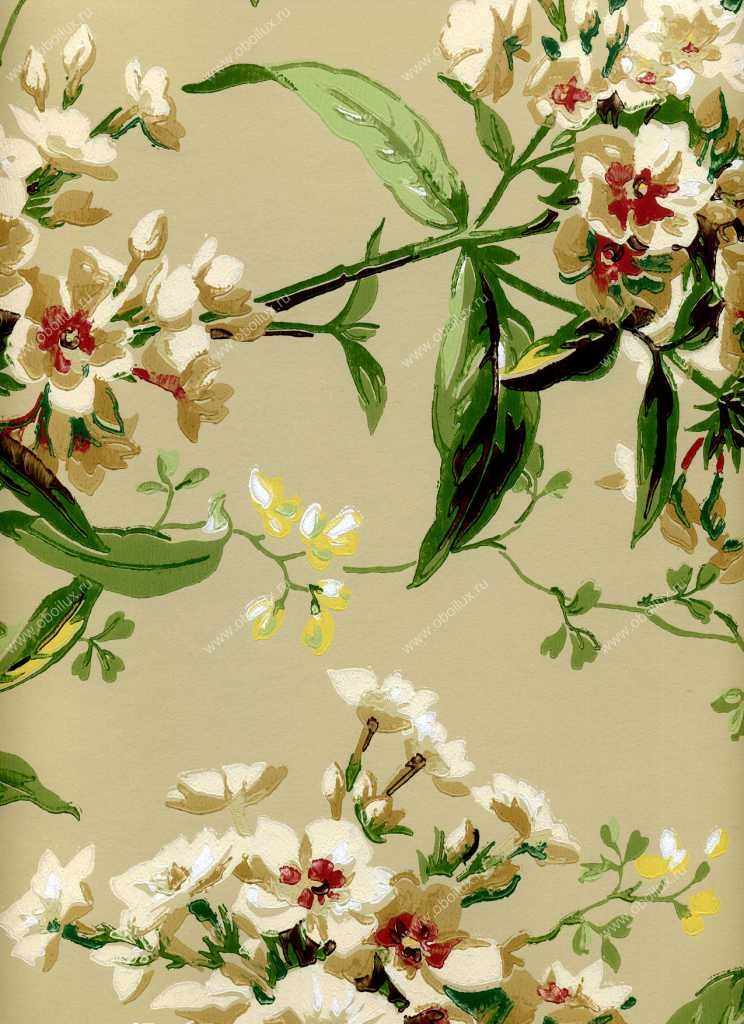 Американские обои York,  коллекция Ashford House - Flowers S.E., артикулCF6308