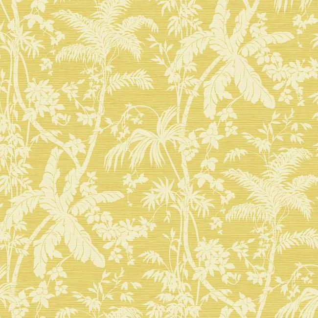 Американские обои York,  коллекция Ashford House - Ashford Tropics, артикулAT7109