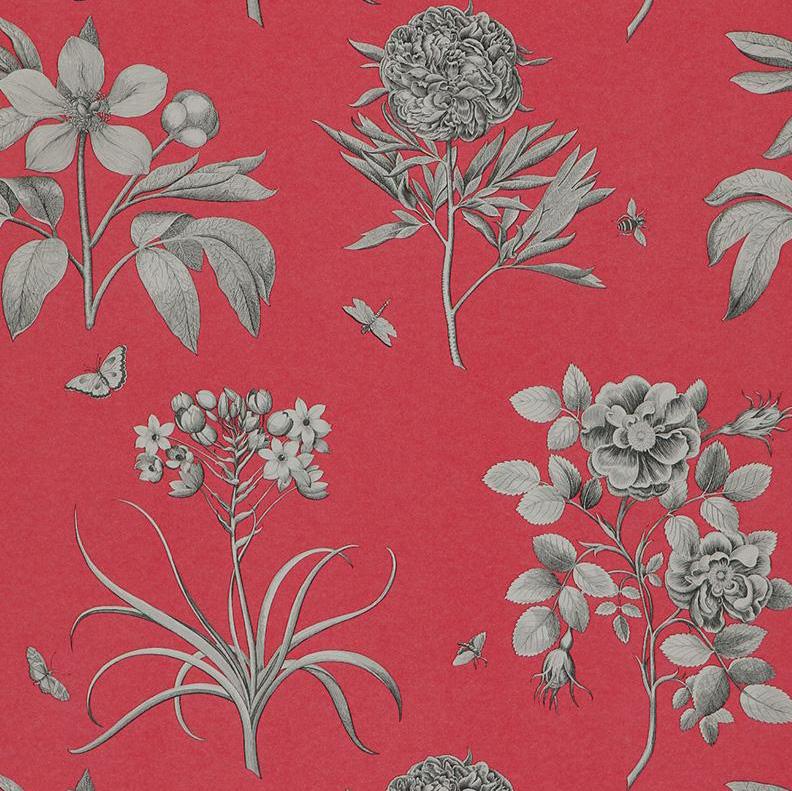 Английские обои Sanderson,  коллекция Parchment Flowers, артикулDPFWER101