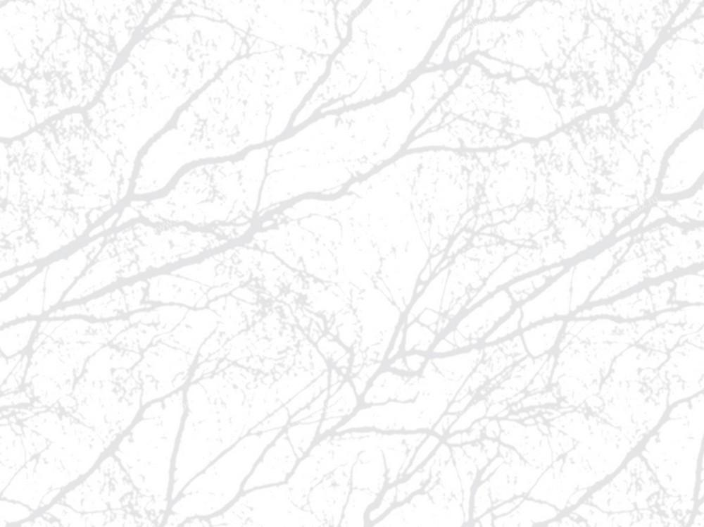 Шведские обои Eco,  коллекция White Light, артикул1736