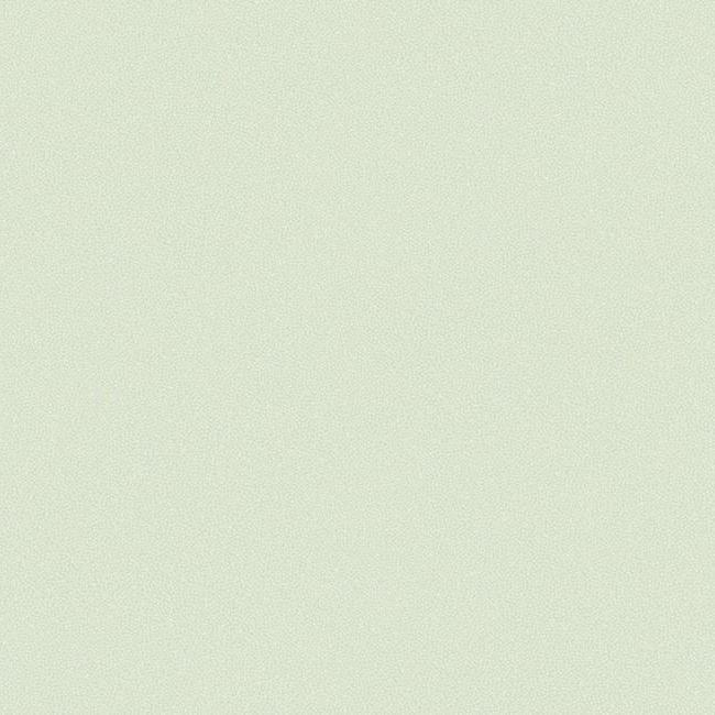Американские обои York,  коллекция Candice Olson - Modern Nature, артикулCZ2408