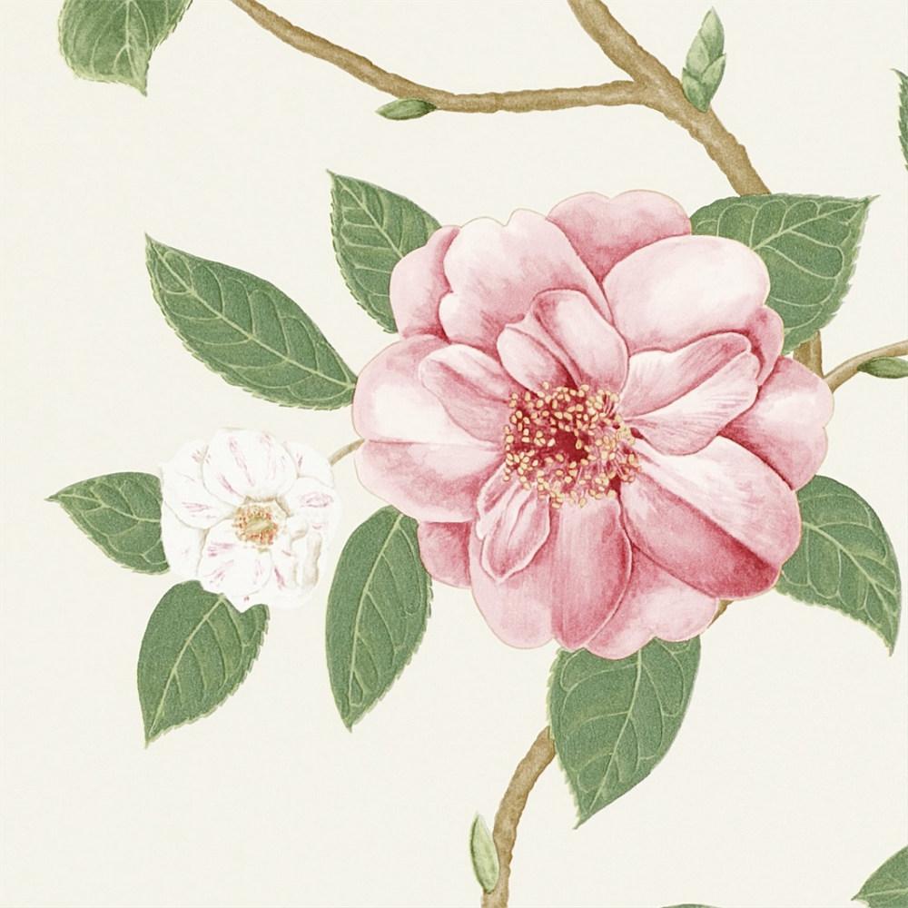 Английские обои Sanderson,  коллекция Voyage of Discovery, артикул213374