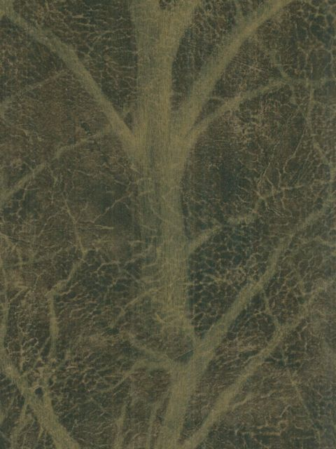 Американские обои Wallquest,  коллекция Sandpiper Studios - New Elegance, артикулSD70012