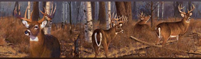 Американские обои York,  коллекция Lake Forest Lodge, артикулFZ4460BD