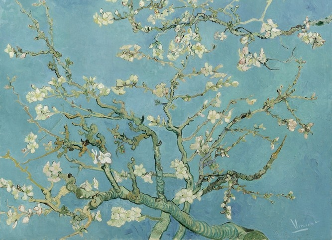 Обои  BN International,  коллекция Van Gogh, артикул30548
