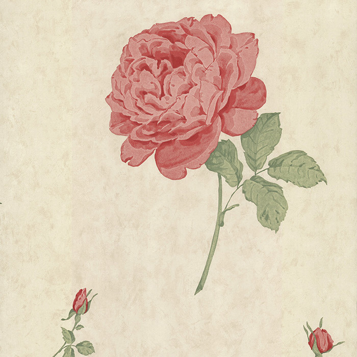 Английские обои The Paper Partnership,  коллекция Birchgrove Gardens, артикулEO00141