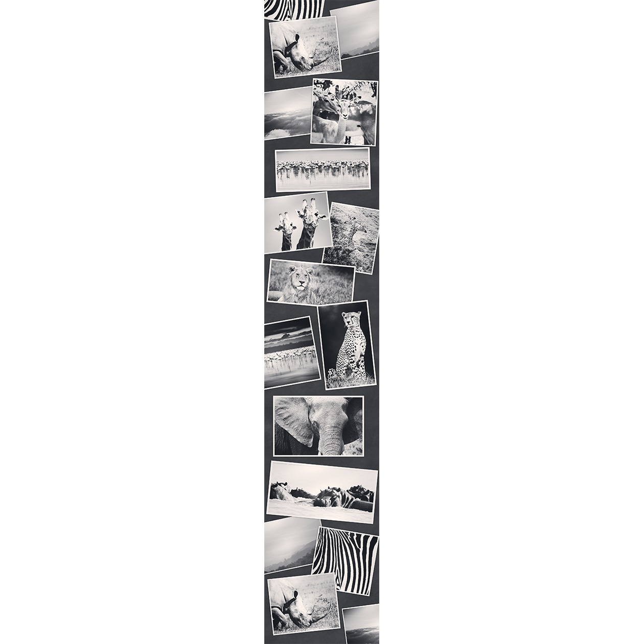 Французские обои Caselio,  коллекция Accent, артикулACE67079842