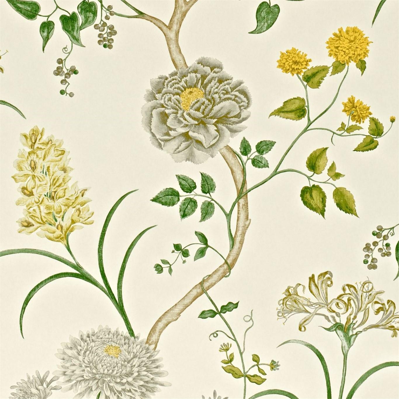 Английские обои Sanderson,  коллекция Wallpapers from a Painters Garden, артикулDAPGST104