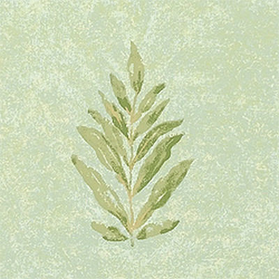 Американские обои Thibaut,  коллекция Palladio, артикулT8861