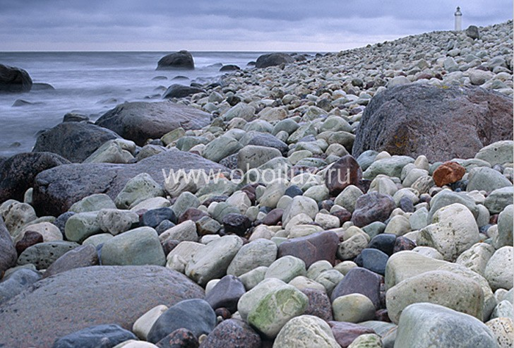 Шведские обои Eco,  коллекция Respect, артикул2450