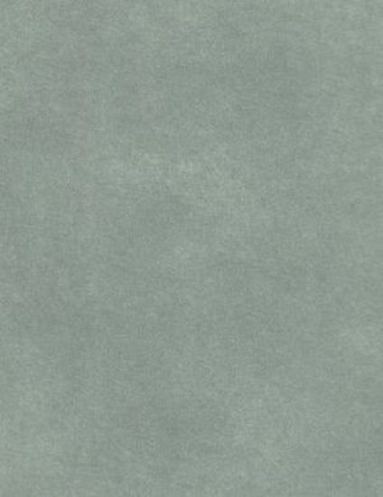 Американские обои Prestigious,  коллекция Fusion, артикул1922-769
