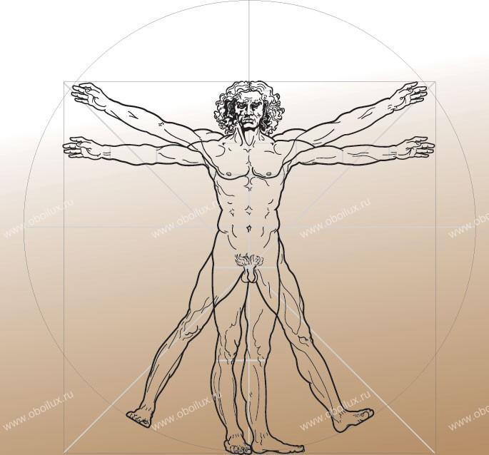 Бельгийские обои Atlas Wallcoverings,  коллекция Raphael 4, артикул1384
