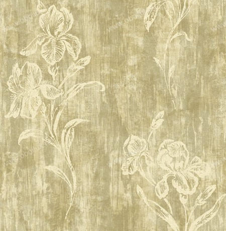 Американские обои Wallquest,  коллекция Trieste, артикулrg40505