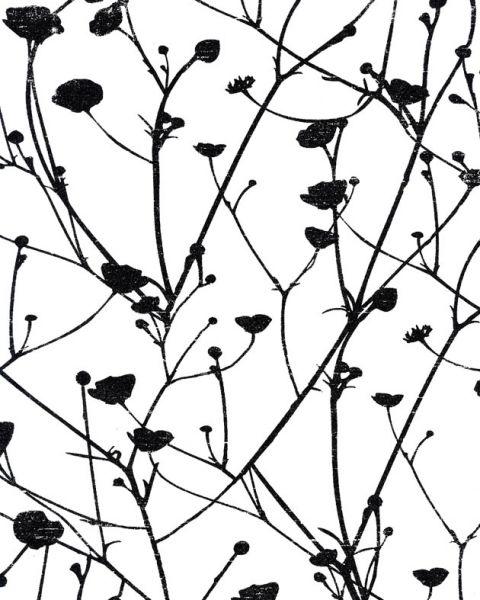 Французские обои Caselio,  коллекция Black & White, артикулBTW61110095