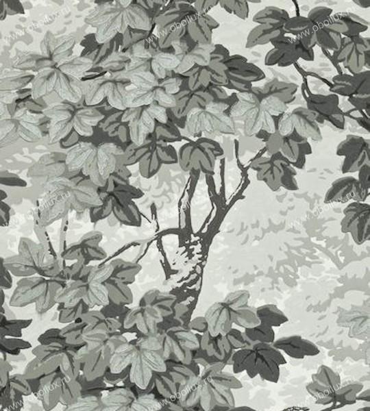 Английские обои Zoffany,  коллекция Intaglio, артикул310059