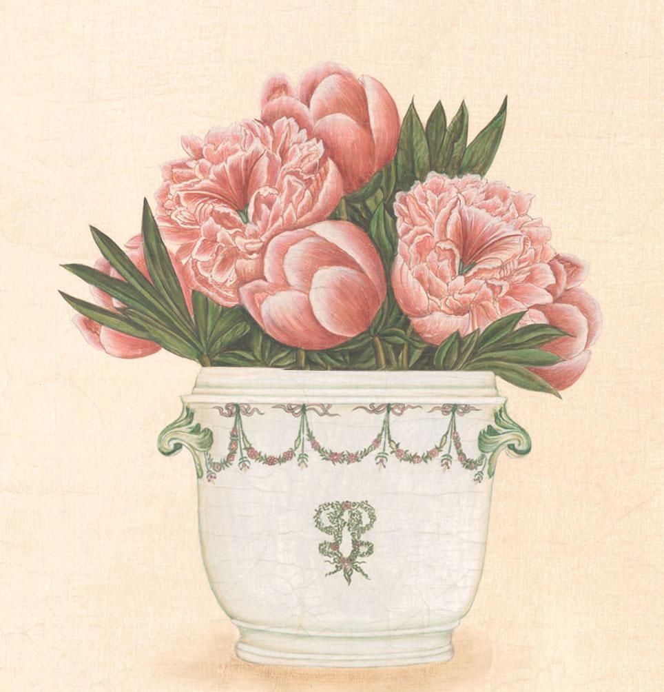 Английские обои Iksel,  коллекция Scenic & Architectural Wallpapers, артикулPottedFlowersPF15