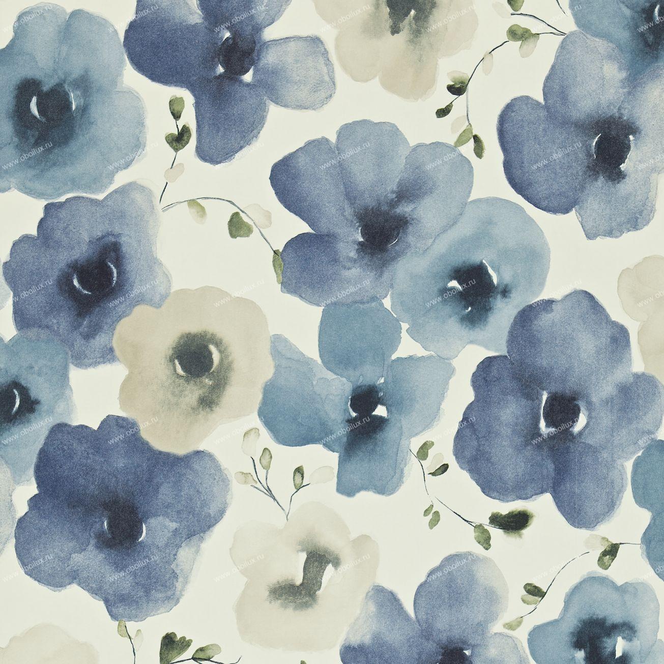 Английские обои Sanderson,  коллекция Colour for Living, артикул211660