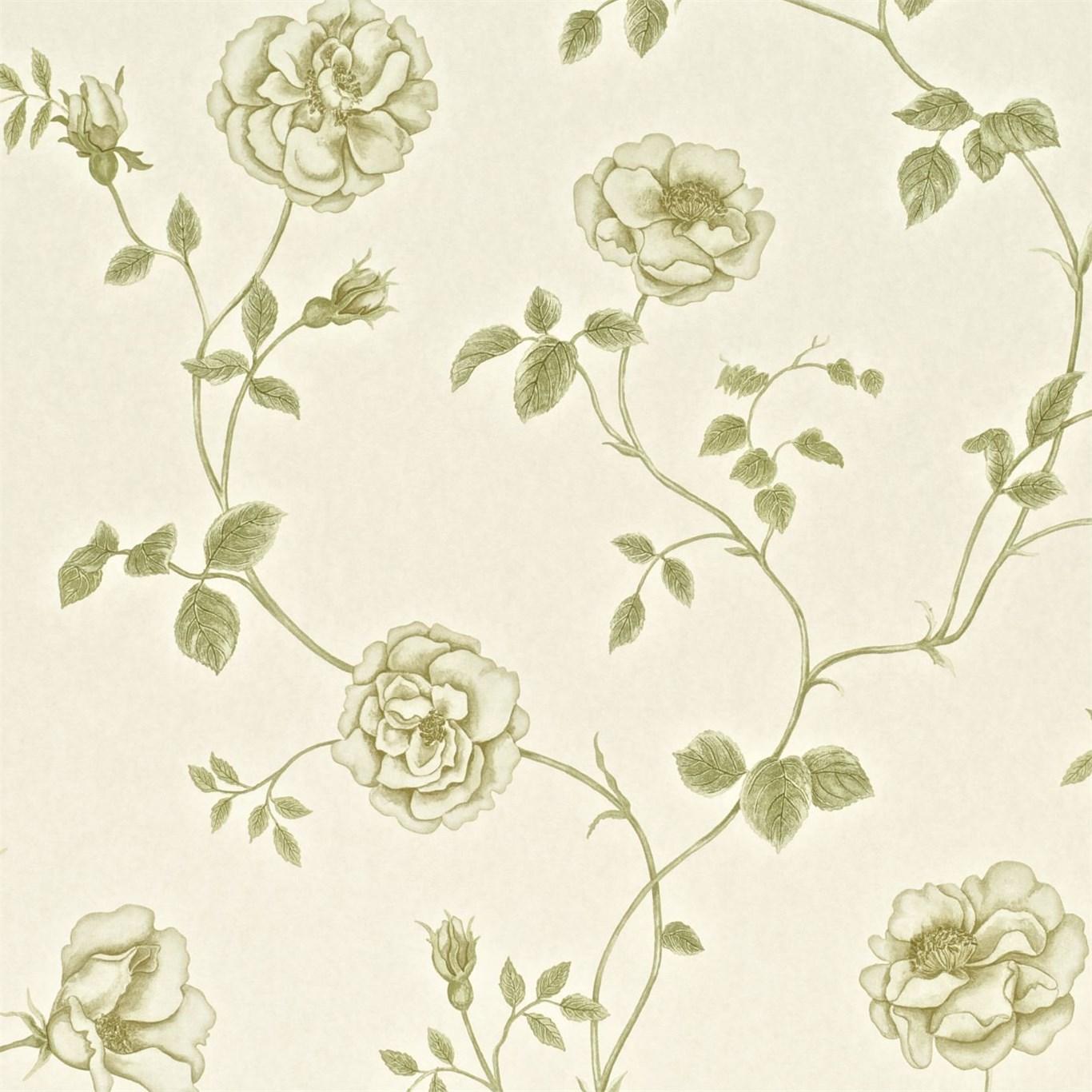 Английские обои Sanderson,  коллекция Wallpapers from a Painters Garden, артикулDAPGRO101
