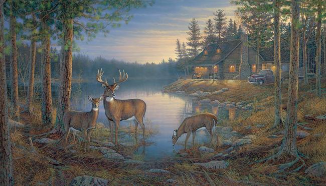 Американские обои York,  коллекция Lake Forest Lodge, артикулLM7955M