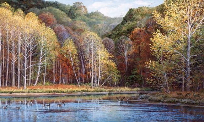 Американские обои York,  коллекция Lake Forest Lodge, артикулRA0211M