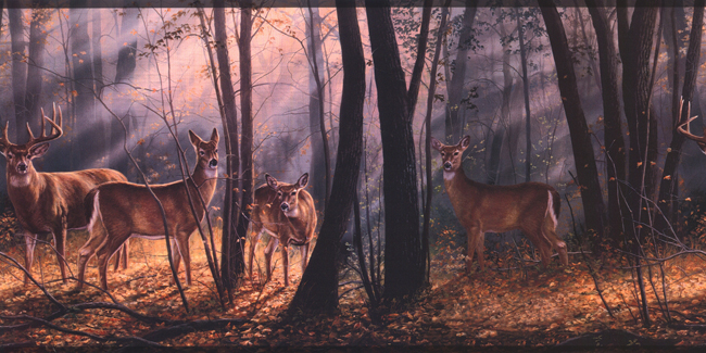 Американские обои York,  коллекция Lake Forest Lodge, артикулWD4100B