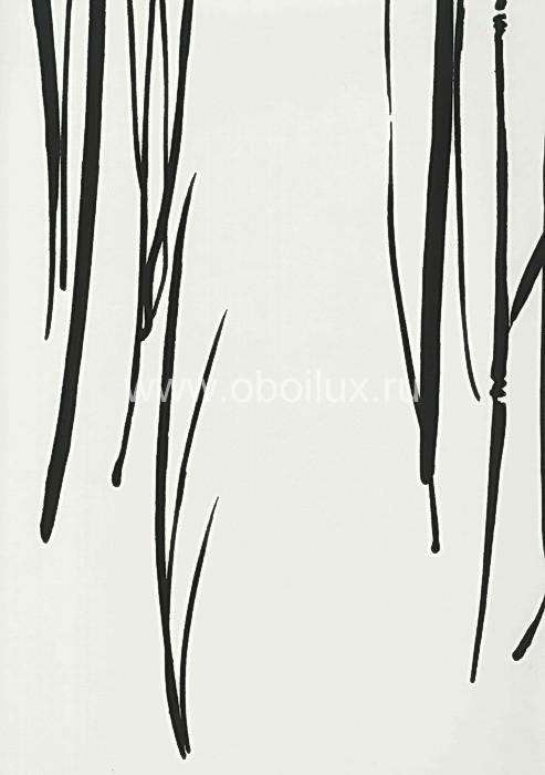 Американские обои Seabrook,  коллекция Contrasto, артикулBW33806