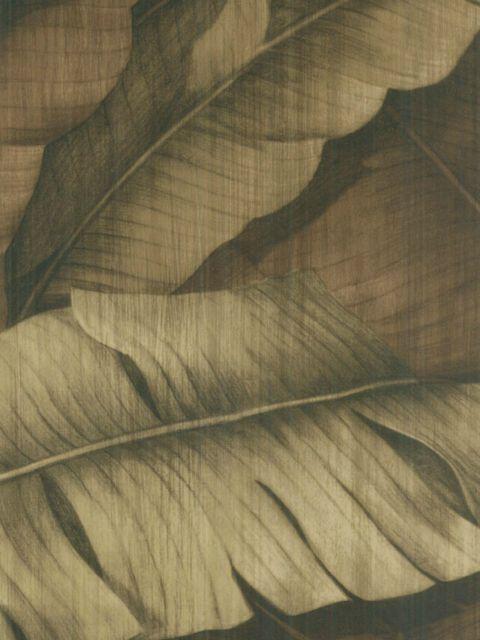 Американские обои Wallquest,  коллекция Sandpiper Studios - New Elegance, артикулSD70507