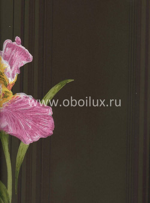 Американские обои York,  коллекция Antonina Vella - Botanica, артикулVB6741