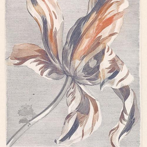 Обои  Eijffinger,  коллекция Masterpiece, артикул358116