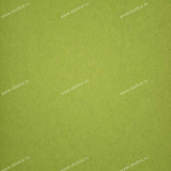 Французские обои Casadeco,  коллекция Botanic, артикулBTC12347121