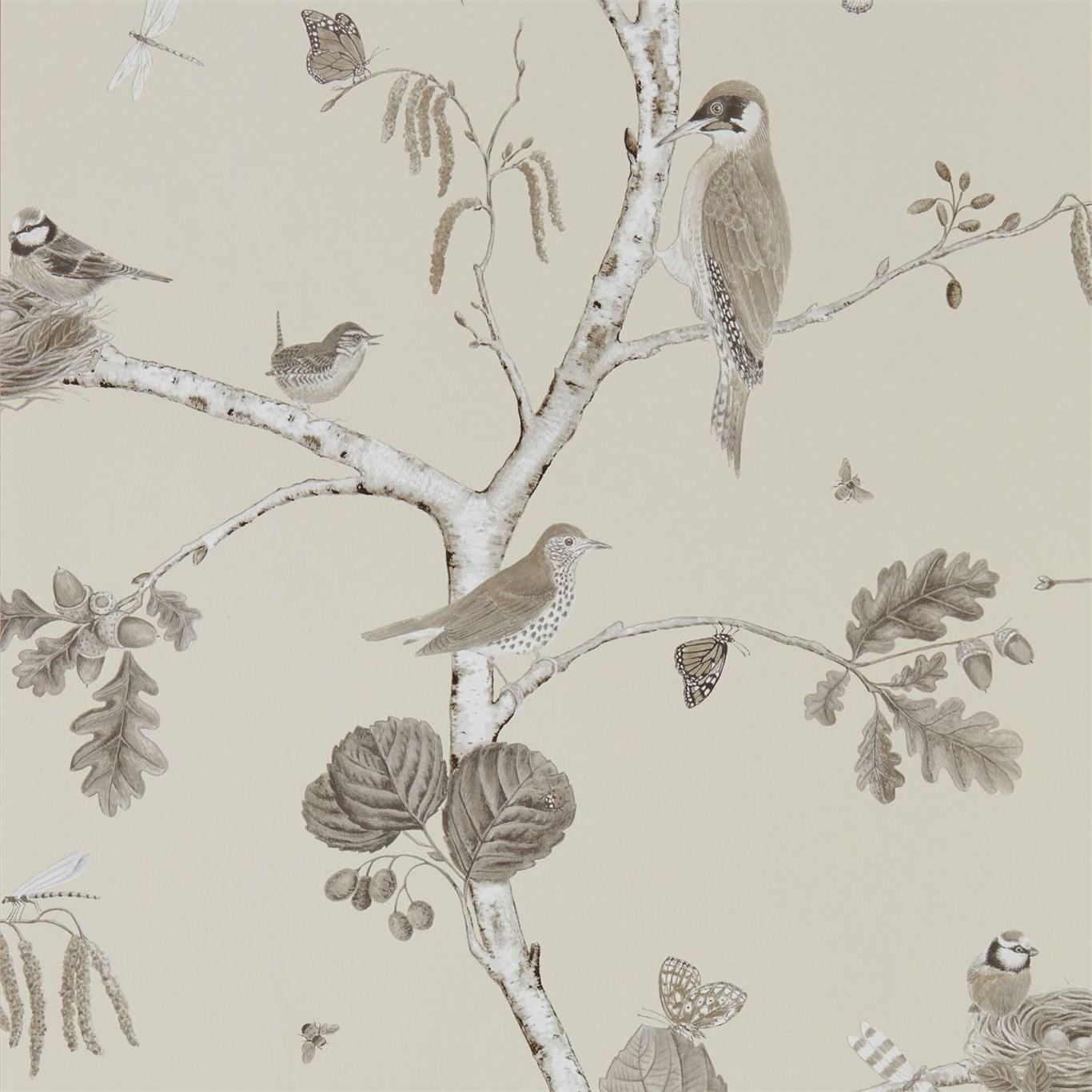 Английские обои Sanderson,  коллекция Woodland Walk, артикул215704