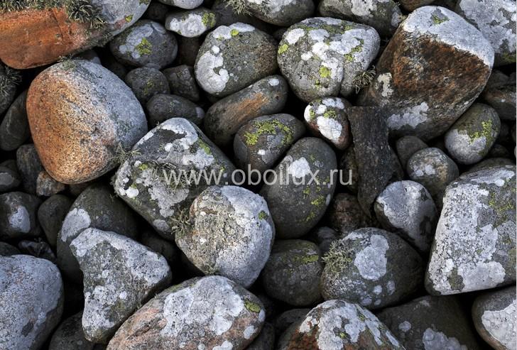 Шведские обои Eco,  коллекция Photo, артикул2438