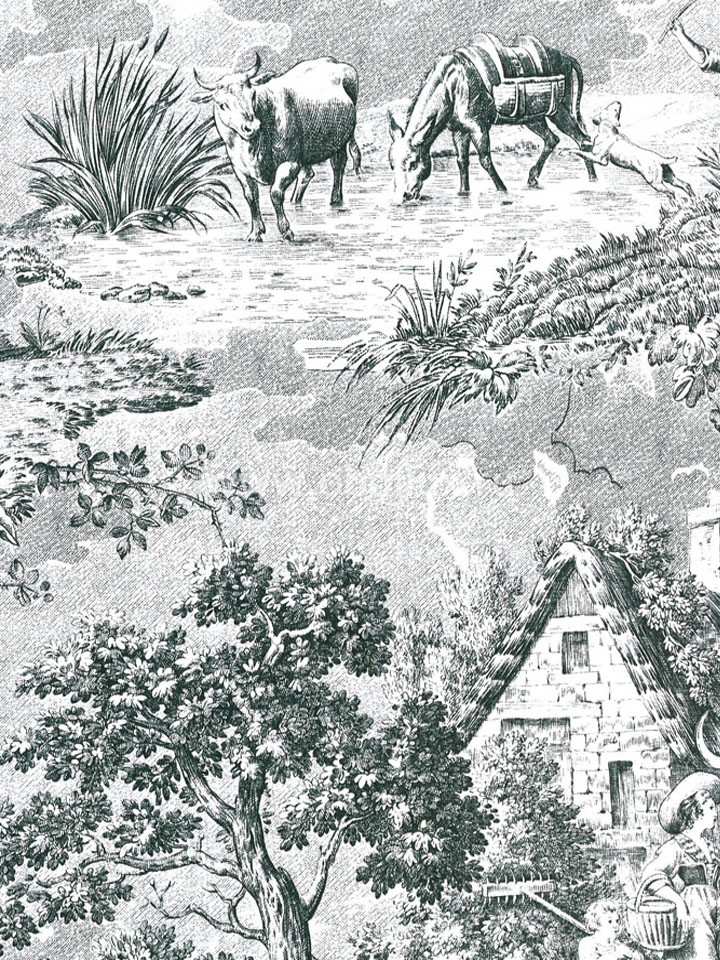 Канадские обои Blue Mountain,  коллекция Black & White, артикулBC1581502