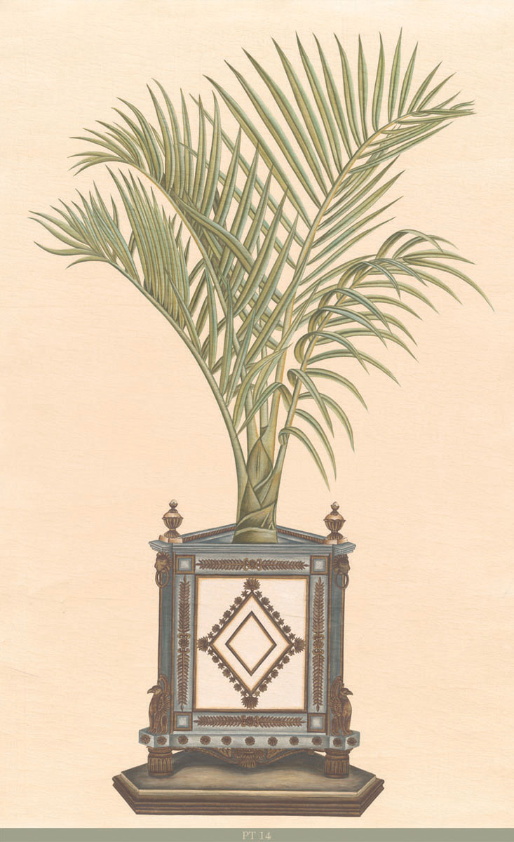 Английские обои Iksel,  коллекция Scenic & Architectural Wallpapers, артикулPottedPalmsPT14
