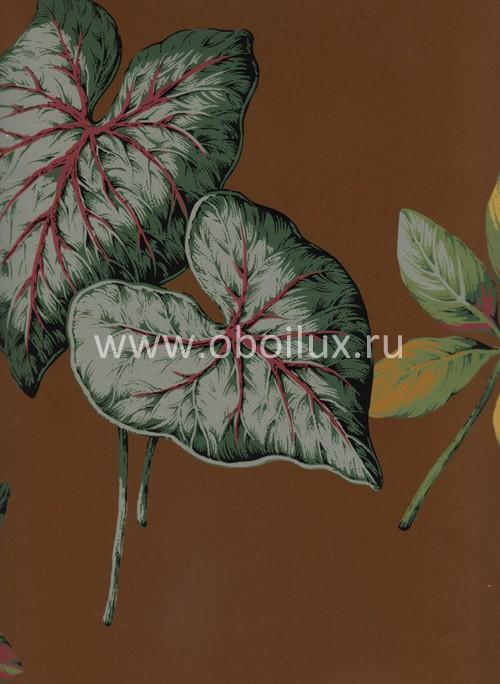 Американские обои York,  коллекция Antonina Vella - Botanica, артикулVB6703