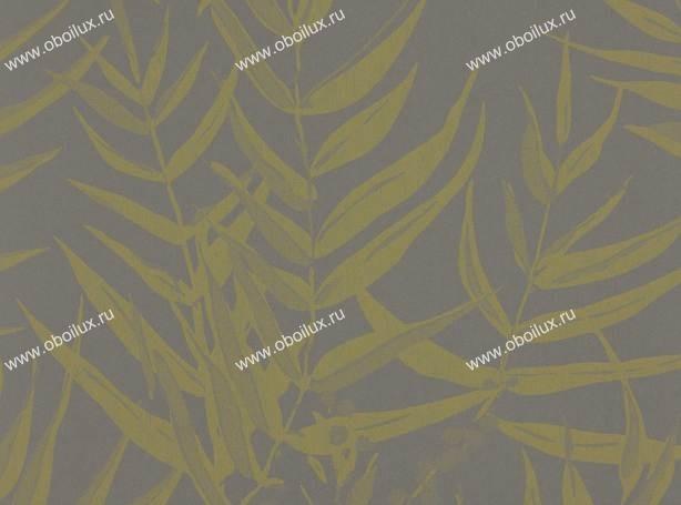 Английские обои Romo,  коллекция Casson, артикулW350-08