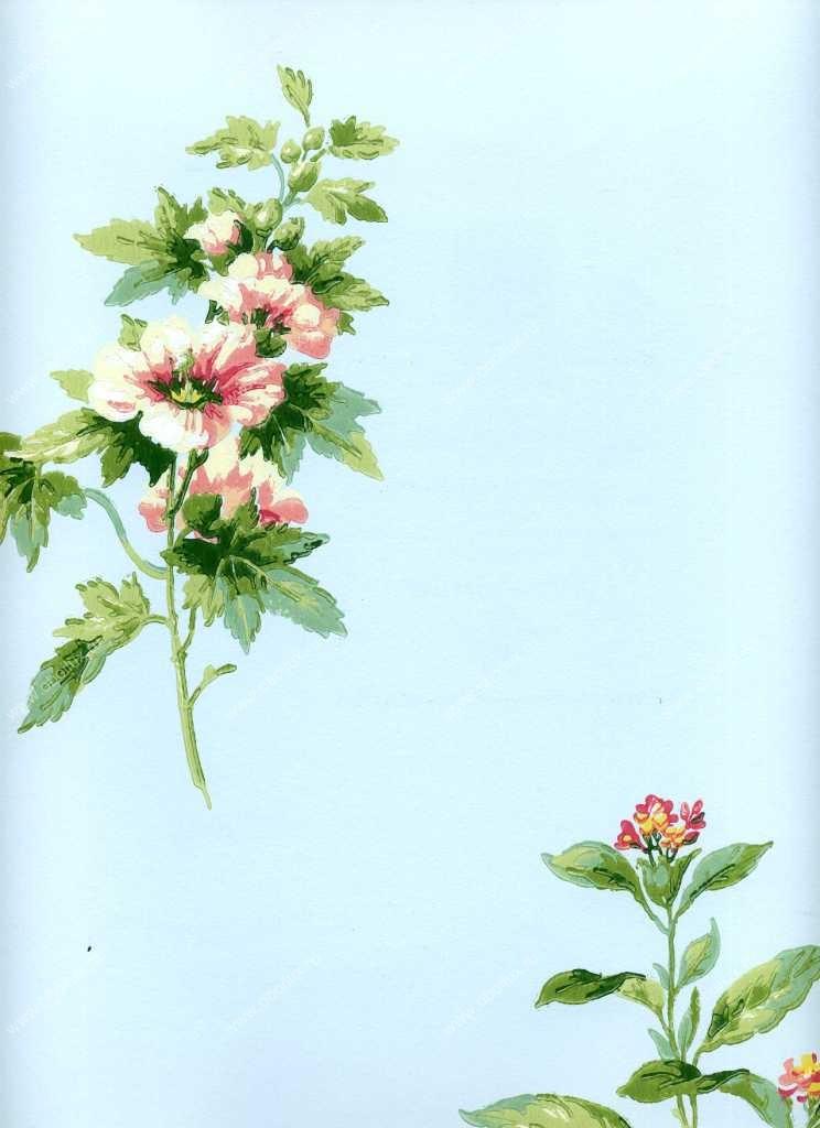 Американские обои York,  коллекция Ashford House - Flowers S.E., артикулWU0715