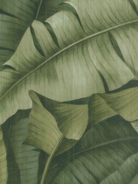 Американские обои Wallquest,  коллекция Sandpiper Studios - New Elegance, артикулSD70514