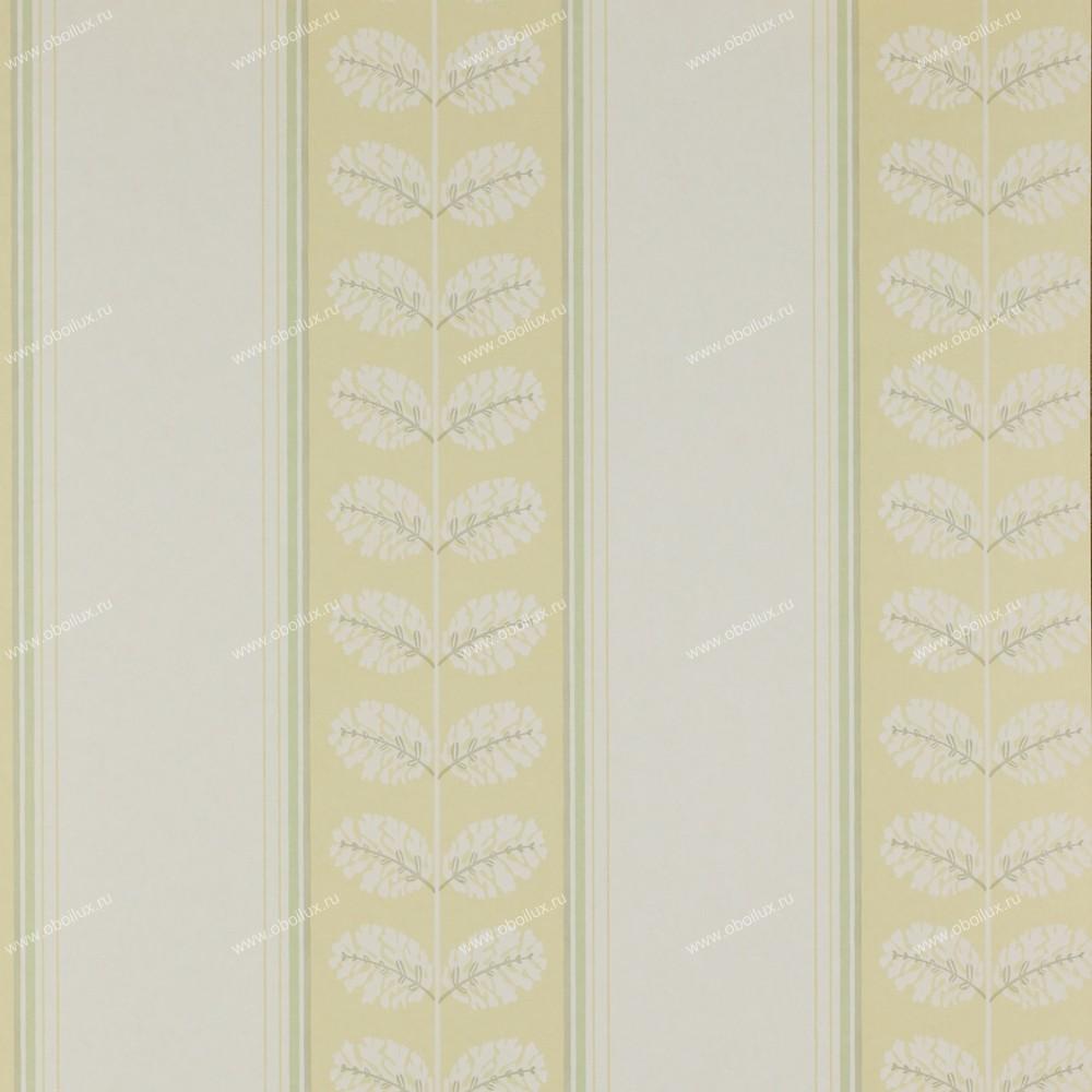 Английские обои Colefax and Fowler,  коллекция Ashbury, артикул07992-03