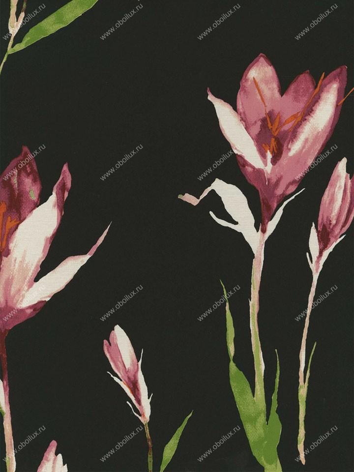 Американские обои Wallquest,  коллекция Fresh Floral, артикулFF91400