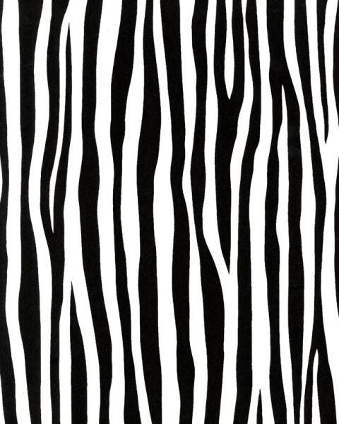 Французские обои Caselio,  коллекция Black & White, артикулBTW61149018