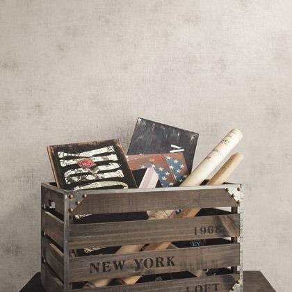 Французские обои Caselio,  коллекция Passport, артикулPSP63621010