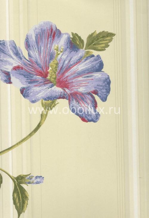 Американские обои York,  коллекция Antonina Vella - Botanica, артикулVB6745