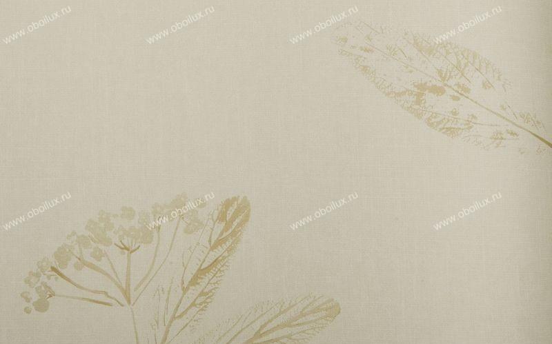 Английские обои Harlequin,  коллекция Arboreta, артикул30283