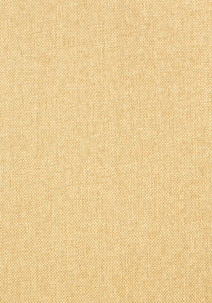 Американские обои Thibaut,  коллекция Grasscloth Resource III, артикулT41123