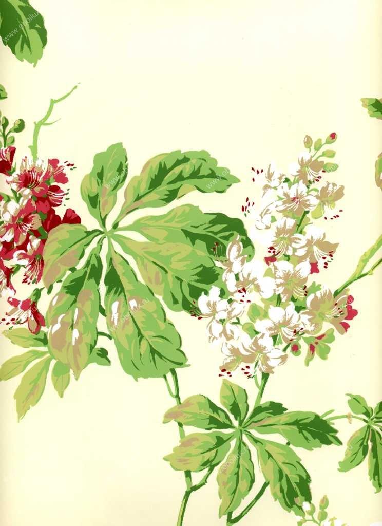 Американские обои York,  коллекция Ashford House - Flowers S.E., артикулNH6057